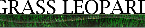 Grass Leopard for RK Launcher by aneeq-qasim