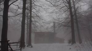 Snow V1...