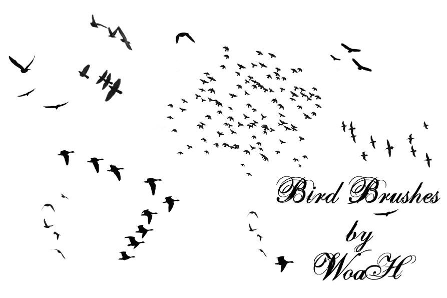 Flying Bird Brushes
