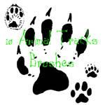 10 Animal Track Brushes