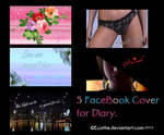 5 FaceBook covers for diary