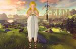 Zelda (White Dress) - Breath of the Wild