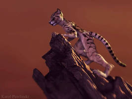 Tiger Turntable Flash by KP-ShadowSquirrel