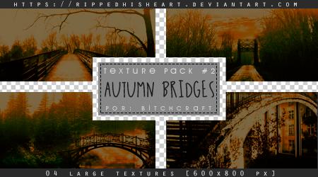 TEXTURE PACK 02# Autumn Bridges by RippedHisHeart