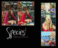species by Heisbieber