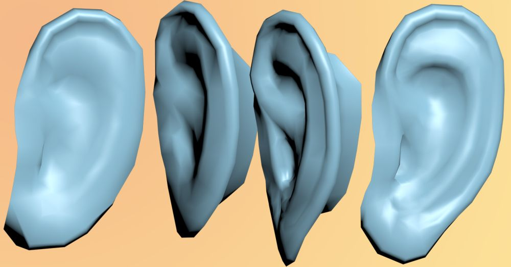 Semi-cartoony Ear 3d model (free OBJ FBX download) by archon357