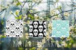 ~ Skull Patterns ~
