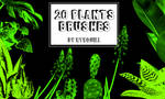 20 Plants brushes by RTRQuill by RTRad