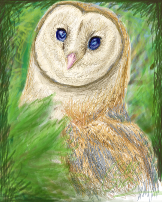 30 Day Dino Challenge: Day 7 - Barn Owl