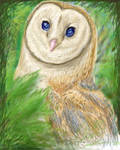 30 Day Dino Challenge: Day 7 - Barn Owl