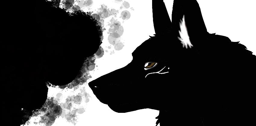 Shadow wolf by NocteBruti