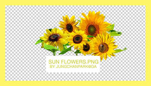 Sunflowers.PNG by jungchanpark