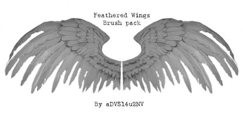 Feathered Wings Brush Pack