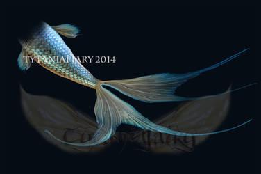 handmade fisdhtale mermaid tale 1 stock by tytaniafairy