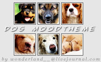 Dog Moodtheme