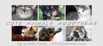 Cute Animals Moodtheme