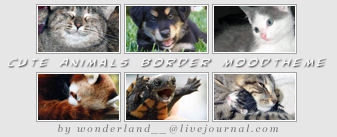 Cute Animals Moodtheme - Border