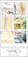 Texture-Gradients 00160