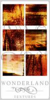 Texture-Gradients 00161