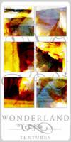 Texture-Gradients 00163