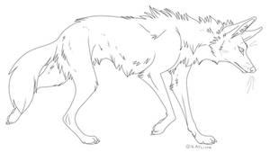 Generic Canine Template