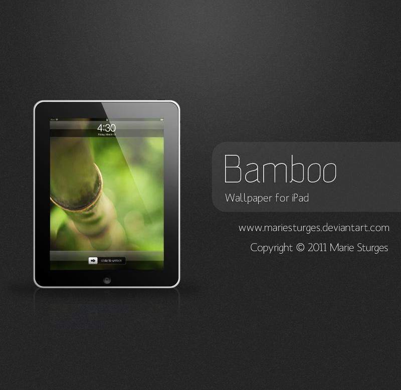 Bamboo for iPad