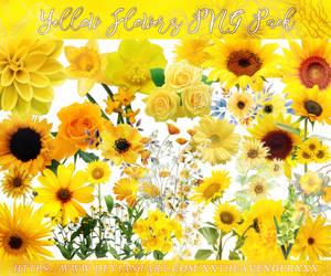 Yellow Flowers PNG Compilation-XxTheAvengerXxX by XxTheAvengerXxX