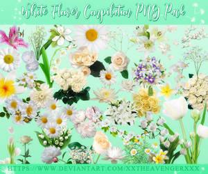 White Flowers Compilation PNG Pack-XxTheAvengerXxX by XxTheAvengerXxX