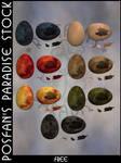 Hatching Eggs 001