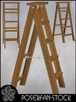Ladder 003