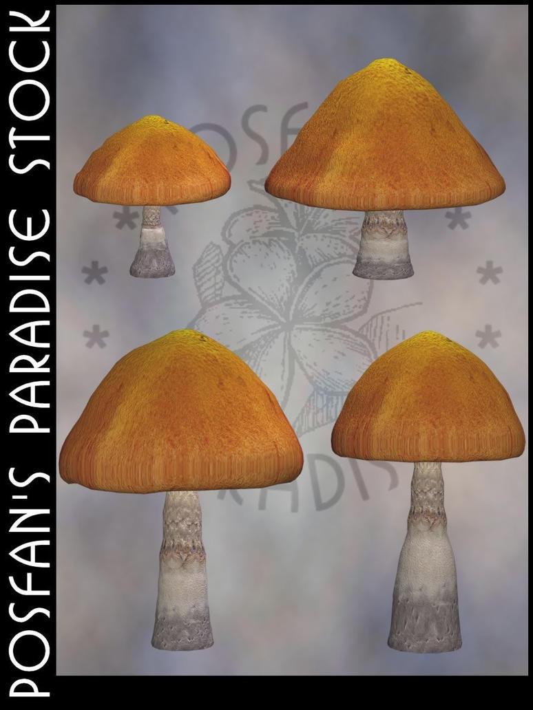 Mushroom 005 by poserfan-stock
