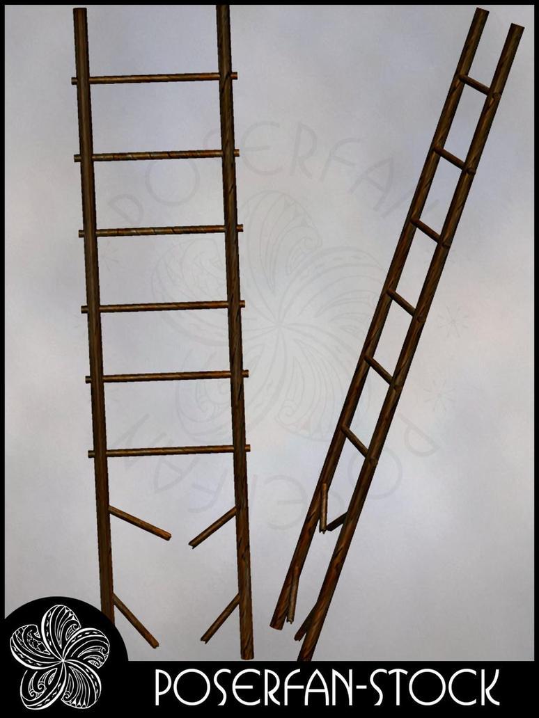 Ladder 002 by poserfan-stock