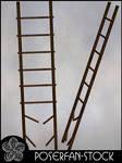 Ladder 002