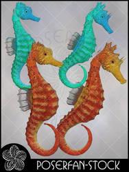 Seahorse 004 by poserfan-stock