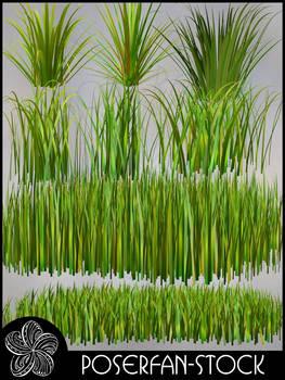 Grass 002