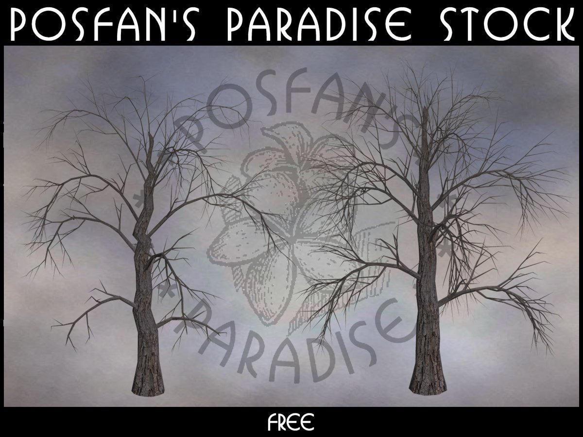 Dead Trees 004 by poserfan-stock