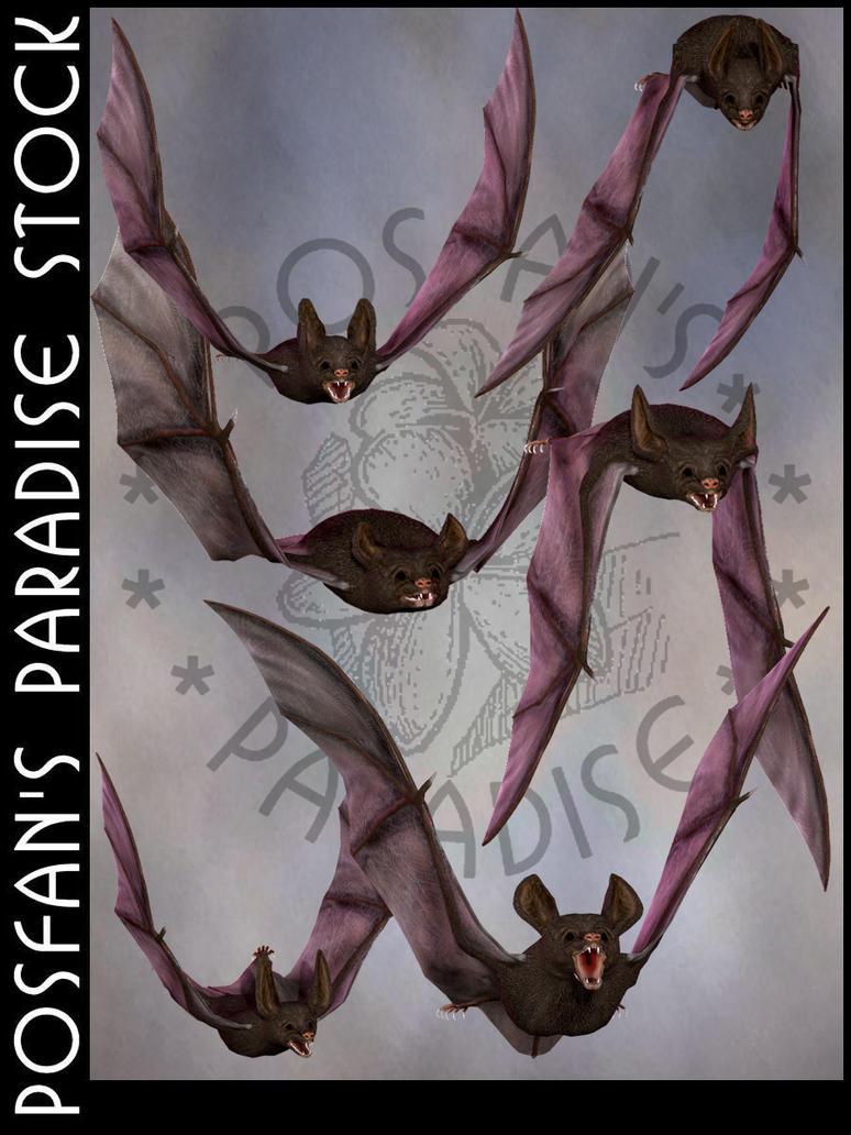 Bats 001 by poserfan-stock