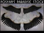 Daemon Wings 001 by poserfan-stock