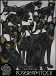 Cats 002 Bastet by poserfan-stock