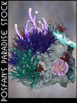 Coral Reef 017 by poserfan-stock