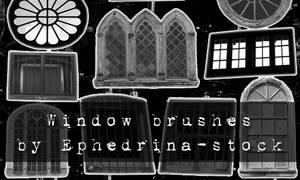 Window brushes