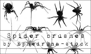 Spider brushes