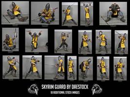 Skyrim Guard unedited