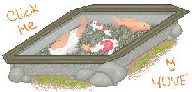 [Pixel Challenge] Koi pond