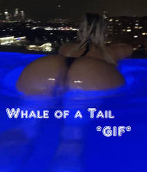 Whale of a Tail TG *GIF* by DerykShane
