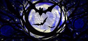 full moon with bats