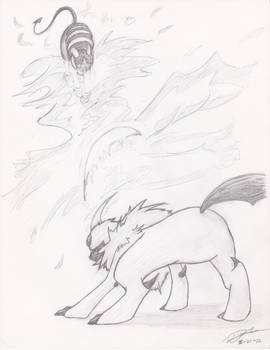 Absol vs. Houndoom