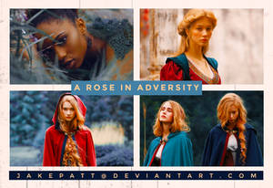 PSD 28 - A Rose In Adversity