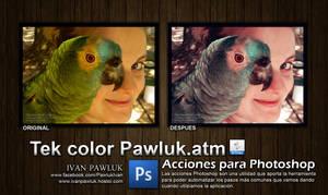 Tek color Pawluk