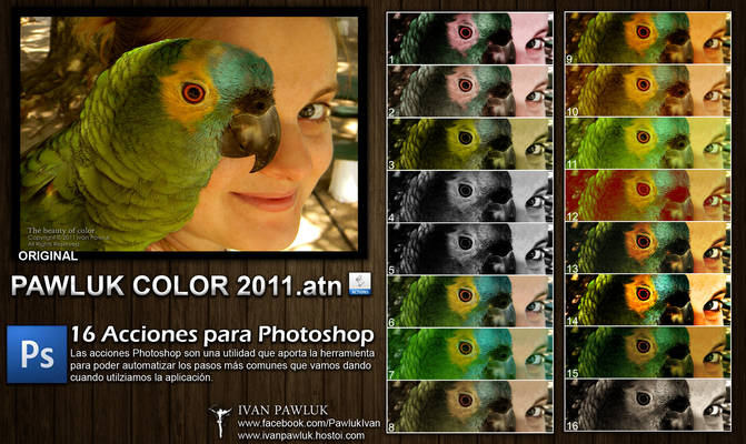 16 Acciones- PAWLUK COLOR 2011